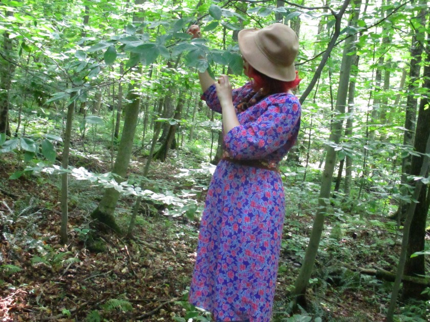 woods VI