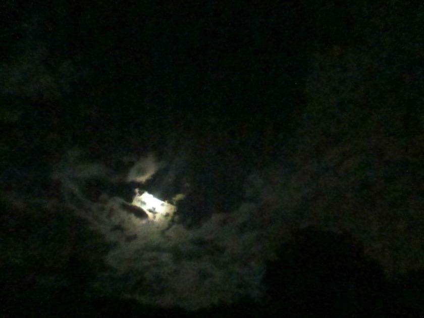 night V
